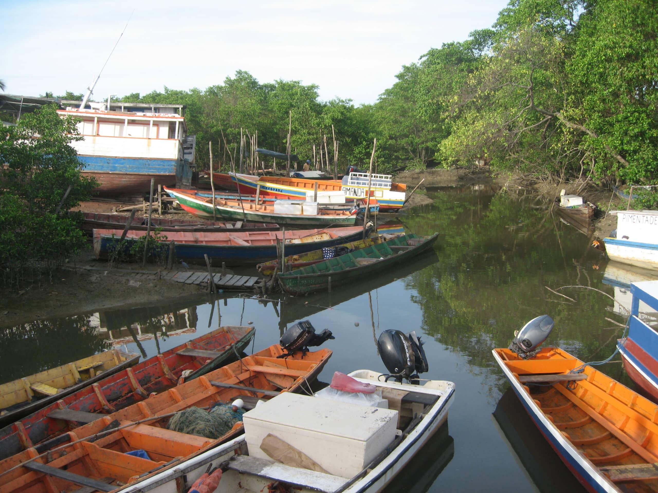 Navires artisanaux de pêche côtière et mangrove. IFREMER